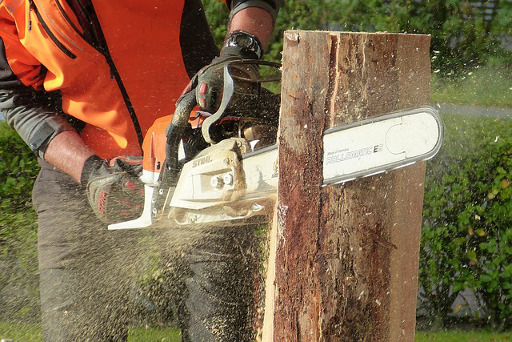 Tree & Stump Removal Services All Over The Woodhouse Carr Region